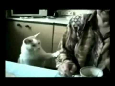 самые смешные видео со всего рунета!!! 3