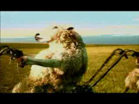 Старая реклама ментос ...овечки.