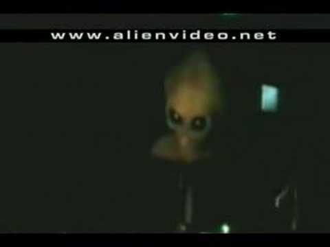 Alien Video - Real Aliens