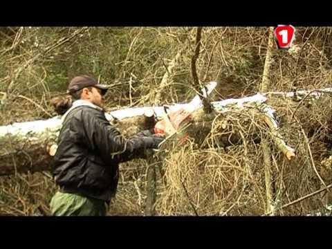 Документальный фильм: Экспедиция X-territory (ноябрь, 2010). Ч.2